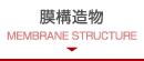 膜構造物 MEMBRANE STRUCTURE